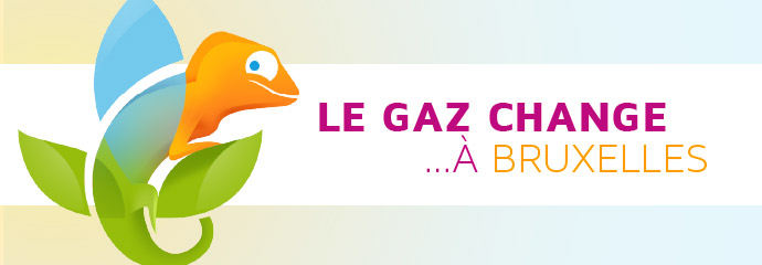 Campagne Conversion Gaz